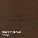 NT75R