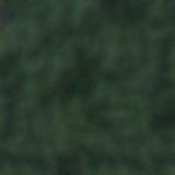 VERDE-MUSCHIO-RAL6005RG-raggrinzante