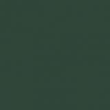 VERDE-MUSCHIO-RAL6005