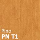 PN-T1-scritta